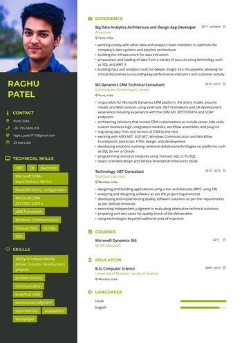 Resume Big Data / CRM Consultant