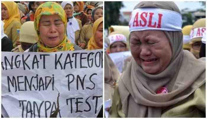 Tenaga Honorer Se-Indonesia Dipensiunkan, Hanya PNS yang Dipertahankan