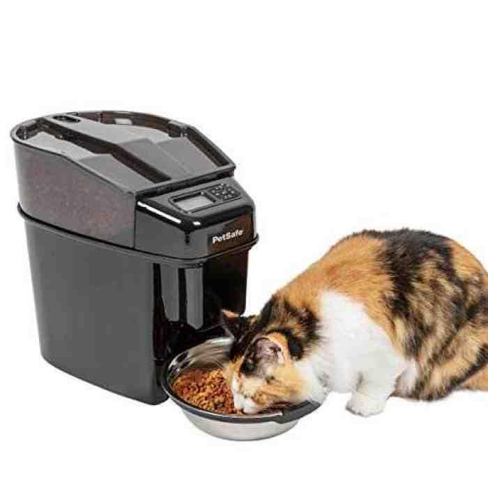 5 Food Dispenser Untuk Kucing Terbaik
