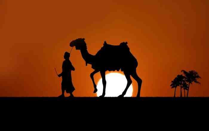 Mukjizat Nabi Shaleh dan Kaum Tsamud