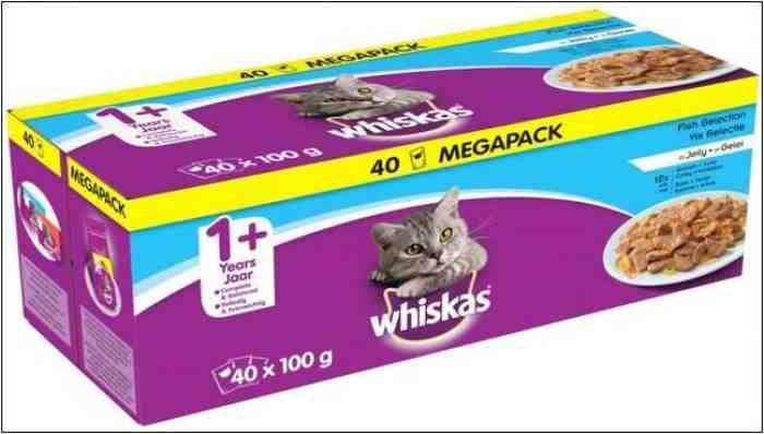 5 Makanan Kucing Yang Bagus Untuk Bulu Rontok