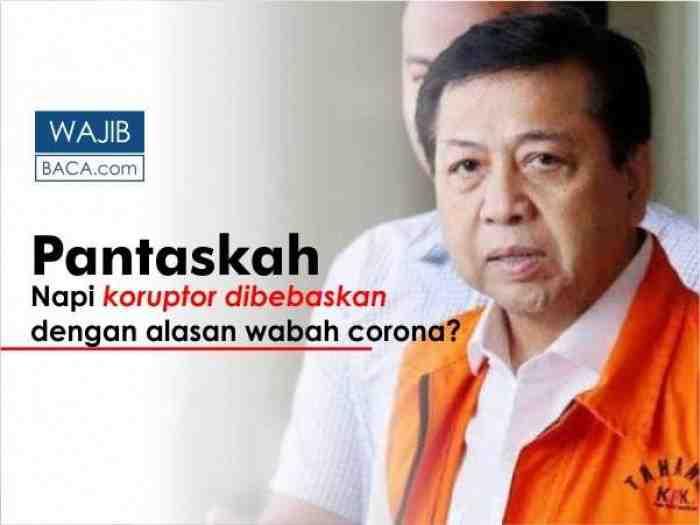 Koruptor Dibebaskan, Netizen
