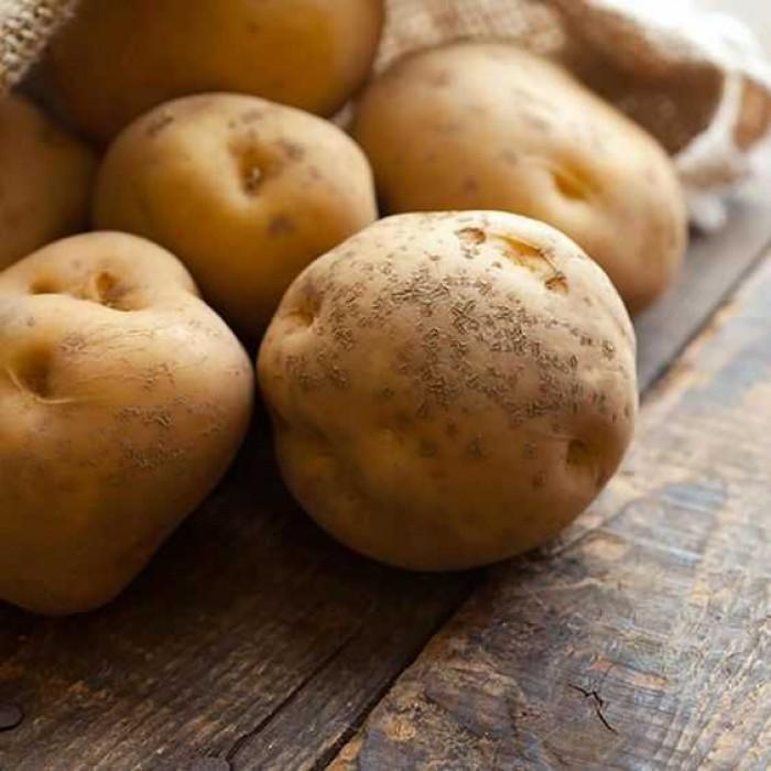 Cara Menghilangkan Jerawat Dengan Bahan Halal Dan Alami: 10 Cara Menghilangkan Selulit Dengan Bahan Alami