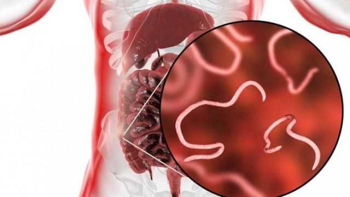 8 Penyakit Menular yang Mematikan dan Cara Pencegahannya