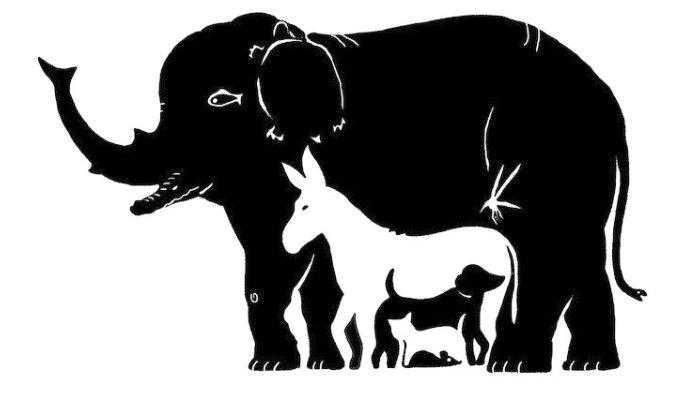 Tes Kepribadian Bisa Ungkap Kekuatan dalam Tubuh: Binatang Apa yang Anda Lihat?
