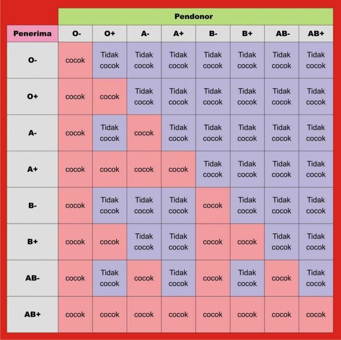 PerbedaanKarakteristik Golongan Darah A, B, AB, dan O