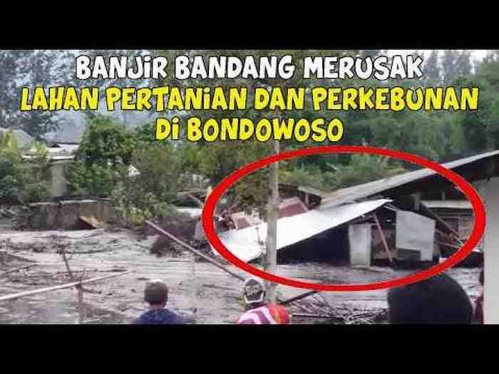 Detik-detik Banjir Lumpur Terbesar Terjang Ratusan Rumah Warga di Bondowoso