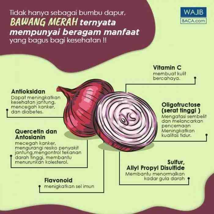 20 Manfaat Bawang Merah Untuk Kesehatan