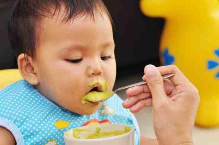Makanan Bayi 11 Bulan