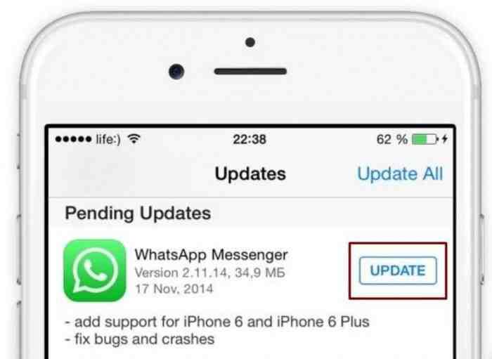 Cara Perbarui Whatsapp Bagaimana? Berikut Penjelasannya