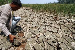 Jawa Kekeringan, Dampak Pemanasan Global Seluruh Dunia akan Krisis Air