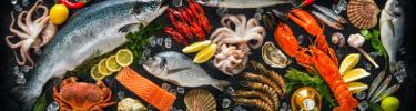 produits-de-la-mer-mobile - Libourne & Primeurs