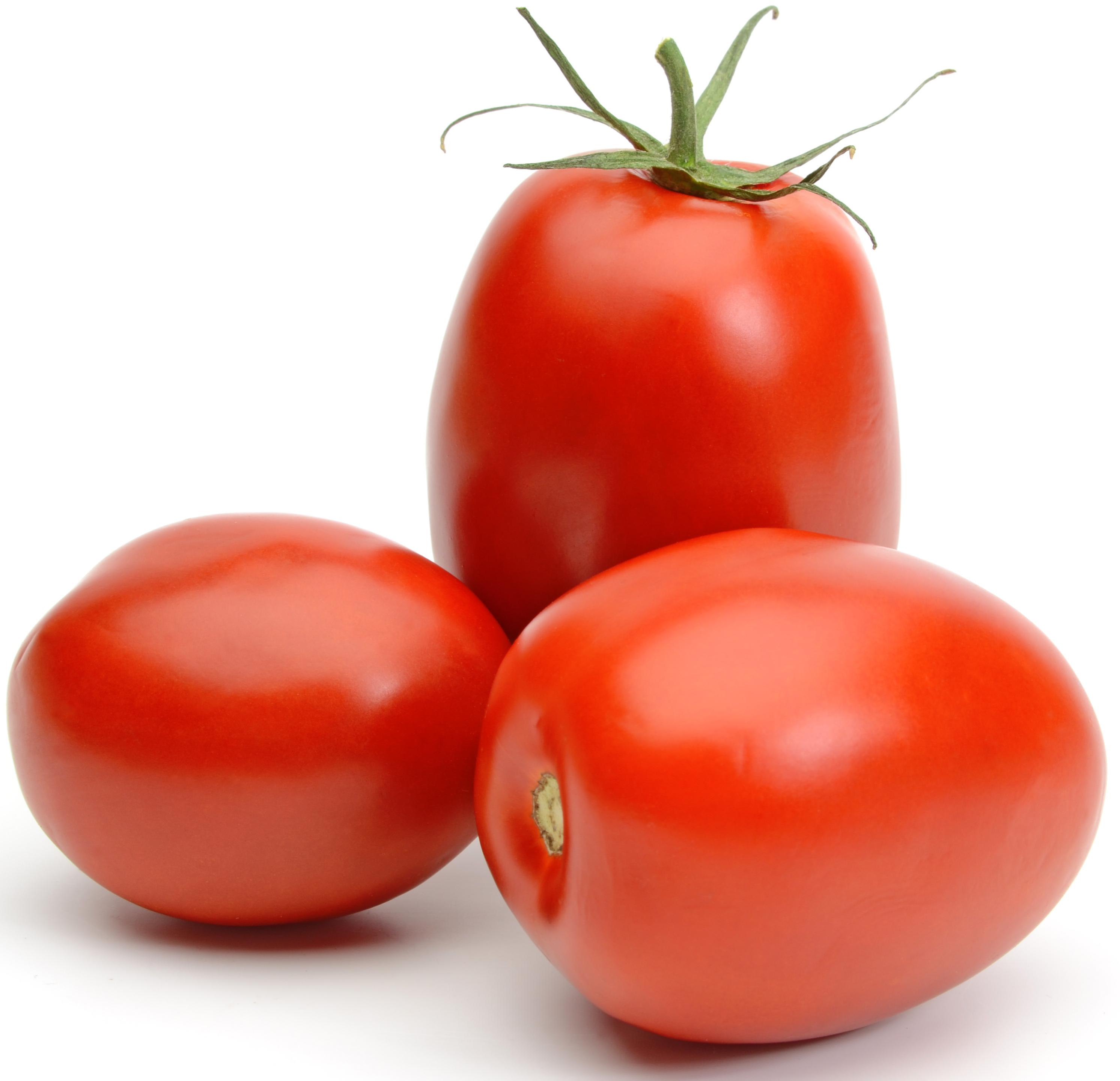 tomate roma - Libourne & Primeurs