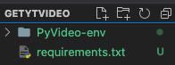 PyVideo-env
