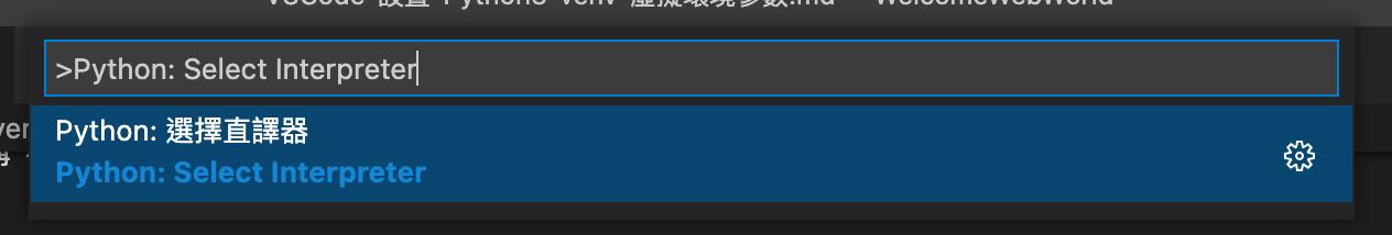 Select Interpreter