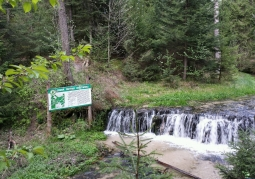 Wodospad na rzece Jeleń - Park Krajobrazowy Puszczy Solskiej