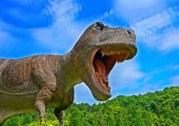 Bałtowski Kompleks Turystyczny - Park Dinozaurów JuraPark - Bałtów