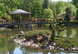 Wysepka z drzewkami bonsai i drewnianym mostem w tle