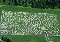 Labyrinth World