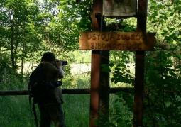 Zdjęcie: Puszcza Białowieska - bliżej natury
