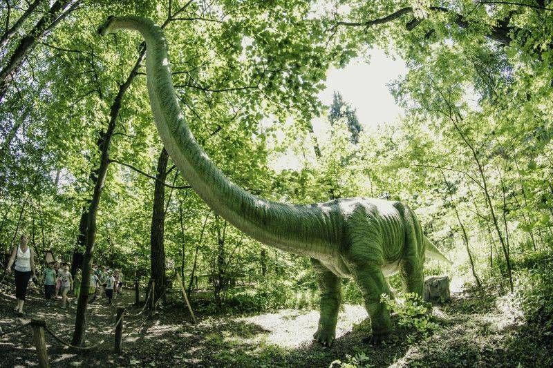 Zatorland Moving Dinosaur Park