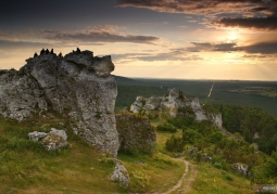Rezerwat przyrody Góra Zborów - Park Krajobrazowy Orlich Gniazd