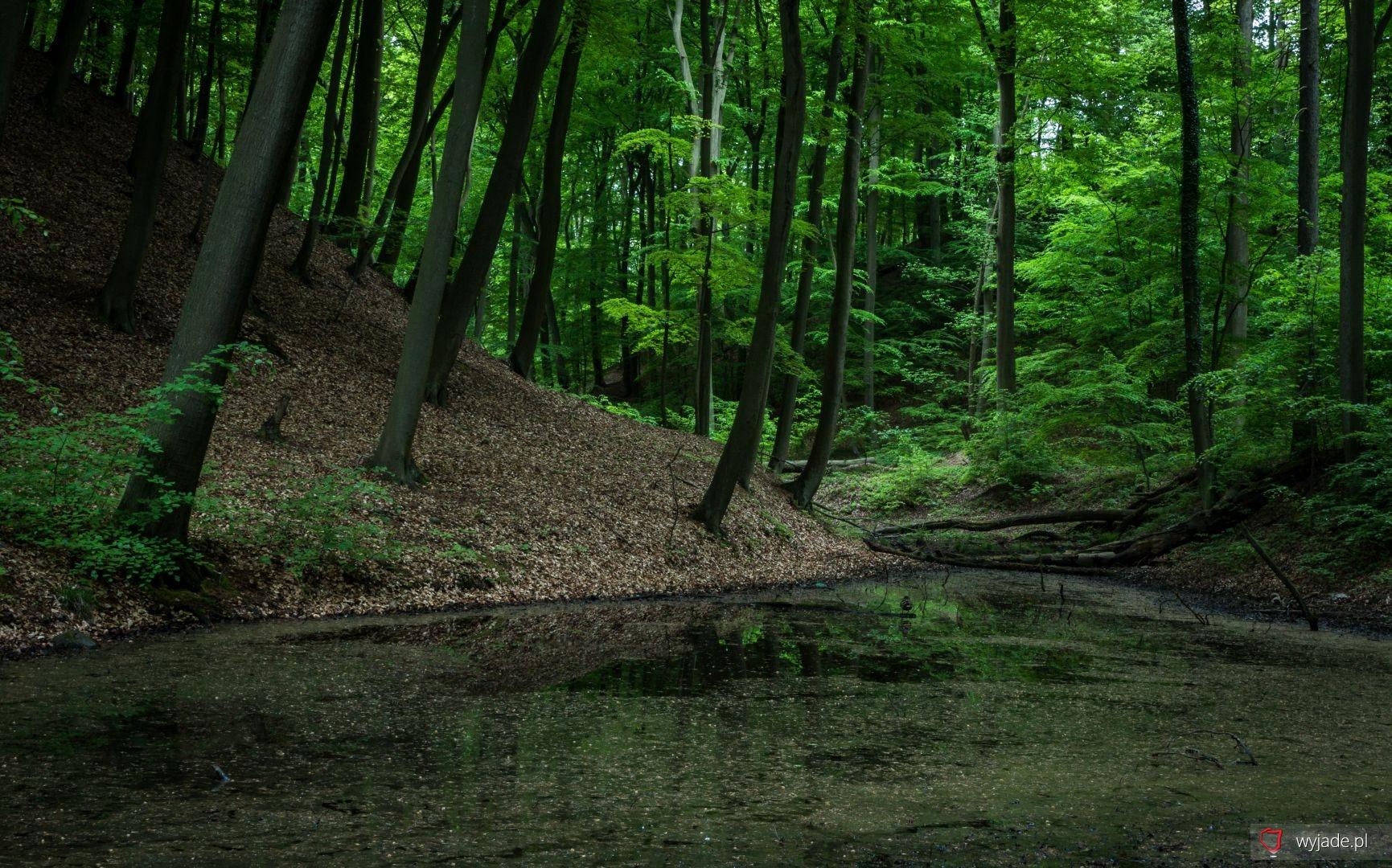 Łagowsko-Sulęciński Park Krajobrazowy