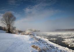Zdjęcie: Park zimą