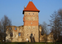 Zamek w Chudowie - Chudów