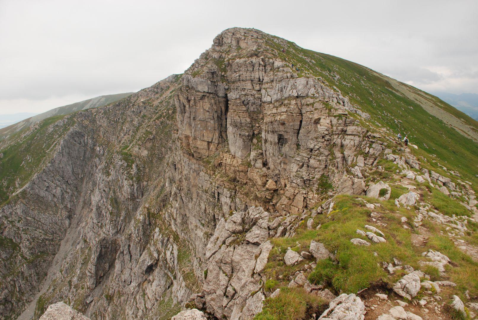 Widok na Krzesanicę z Mułowej Przełęczy