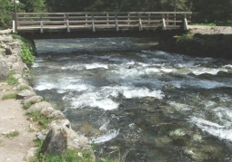 Potok przy ścieżce do Jaskini Mroźnej