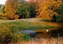 Iński Park Krajobrazowy