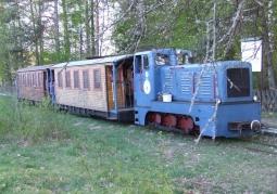 Kolej Leśna Puszczy Białowieskiej