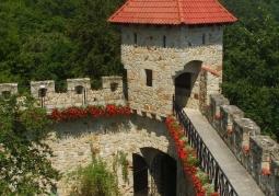 Zamek Tropsztyn - Wytrzyszczka