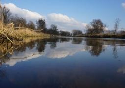 Rzeka Warta, widok od strony Borku Lądkowskiego
