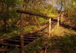 Rezerwat jesienią