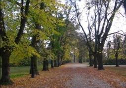 Park Tężniowy - Ciechocinek