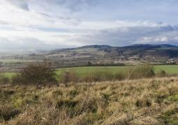 Południowo-wschodni obszar terenu Gór Sowich