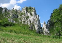 Dolina Bolechowicka, ściana zachodnia