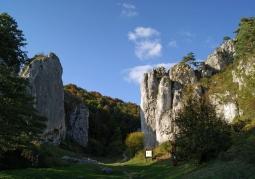 Brama Bolechowicka - Dolina Bolechowicka