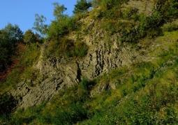 Rezerwat przyrody Wilcza Góra