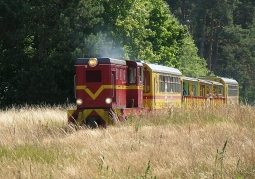Żuławska Kolej Dojazdowa