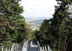 Descent to the observation deck