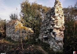Pozostałości murów zamkowych