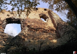 Ruins of the Firlejów castle - Bochotnica