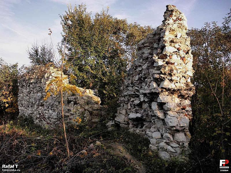 Ruiny zamku Firlejów