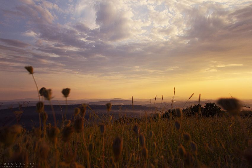 Wieliczka Foothills
