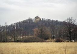 Zamek z oddali