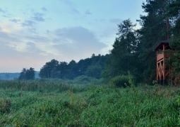 Bagienna Dolina Drwęcy - Brodnicki Park Krajobrazowy