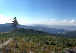 Panorama z Czarnej Góry